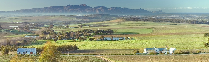 Bein Wine Estate, an Oasis of peace in the heart of the Stellenbosch Winelands